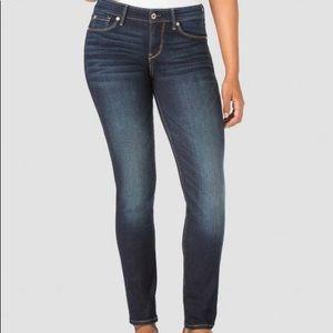 Levis Denizen Modern Skinny Jean